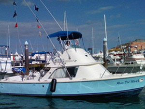 Cabo San Lucas Marlin fishing