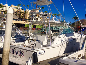 Chaos - Cabo San Lucas Marlin fishing