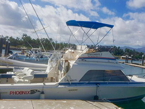 Dona Meche - Cabo San Lucas Marlin fishing