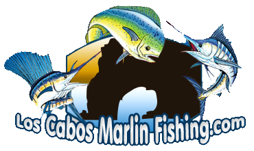 cabo San Lucas Marlin fishing, Los Cabos Marlin fishing charters, Los Cabos Marlin fishing, cabo San Lucas fishing charters