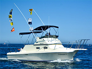 Phantom - Cabo San Lucas Marlin fishing