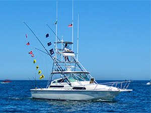 Phantom - Cabo San Lucas Marlin fishing