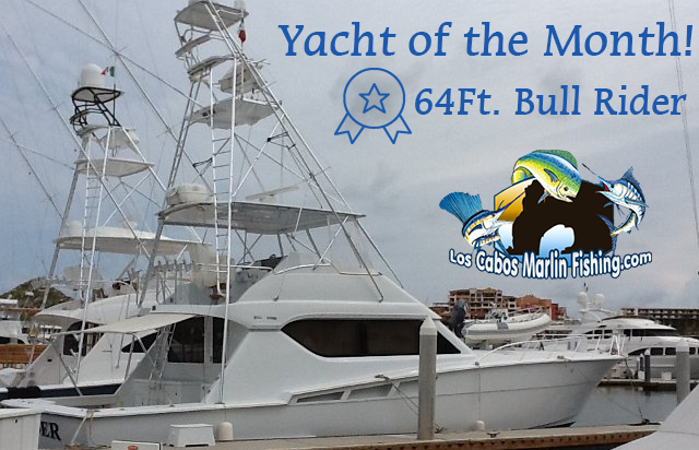 Yacht of the month - Cabo San Lucas Marlin fishing